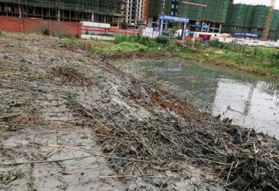 梅雨季到了!华东建材市场的商户和居民们急了