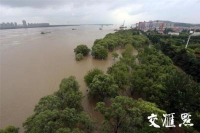 10.05米! 长江南京站高潮水位持续超警戒