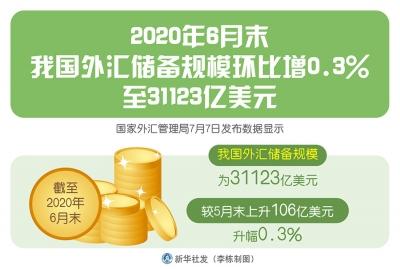 6月末我国外汇储备规模环比增0.3%至31123亿美元