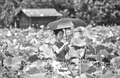 目前,全国乡村旅游复工复产率整体达90%。暑期,浙江、甘肃、河北、四川等一些地方的乡村民宿已预定客满——乡村旅游消费升温