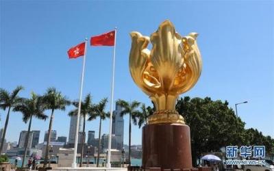 中国香港特区青年代表在联合国人权理事会发言支持国家安全立法