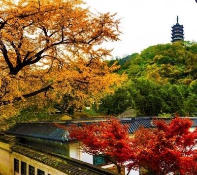 镇江市文广旅局发布暑期旅游安全温馨提示
