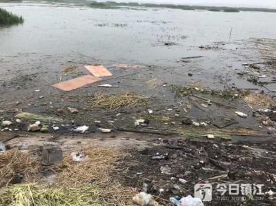 镇江这片江边湿地垃圾遍地,还有人淋油焚烧 居民称苦不堪言