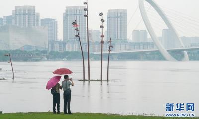 长江高潮位连续16天超警 防汛形势严峻 我市全力备战