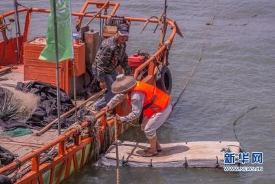 """中国东海首批渔船""""解禁""""出海开渔"""