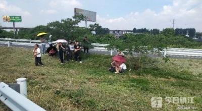 高速镇江段上大客车突发故障 一车乘客转移避暑