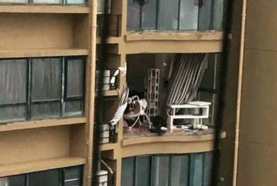 """""""老人台风天关窗坠亡""""事件通报:住户自行改造阳台"""