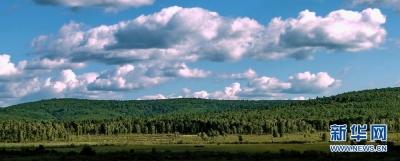 三北工程累计完成造林保存面积3014万公顷