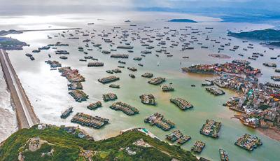"""台风""""黑格比""""将登陆浙江(统筹做好疫情防控和防汛救灾工作)多地多部门积极采取防御措施,提前转移人员,撤离海上作业渔船"""
