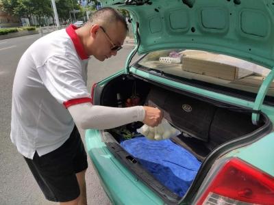 后续 | 金山公益包圆每月300个鸡蛋 生命永恒志愿者主动运送第一批