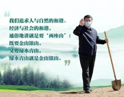 """""""两山论""""实践看央企,绿色发展!"""
