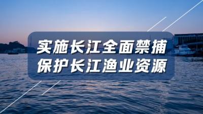 """弃""""江鲜之名""""扬""""绿色美名"""" 看全国首个""""江鲜之乡""""如何保护长江"""