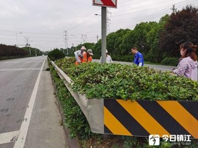 丹阳修剪整治绿化,打造公路绿色长廊