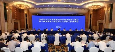 推动长江经济带发展领导小组办公室专题会暨三峡集团参与共抓长江大保护工作现场会在镇举行