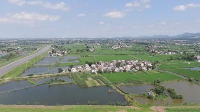 江苏句容铜山村:二十年三次升级  蹚出水产小康路
