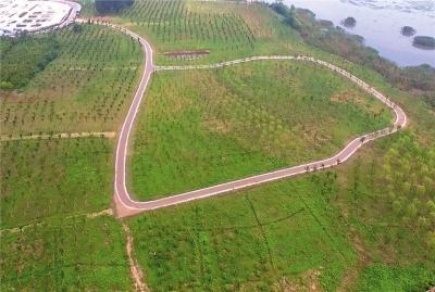 江苏镇江:旧貌换了新颜 长江岸线绿美长廊雏形初现