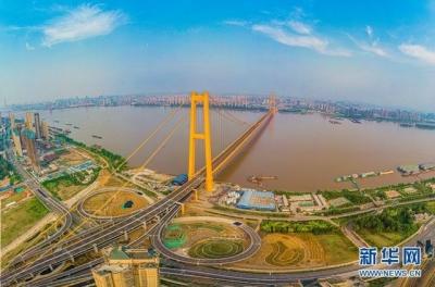 """武汉""""免票游""""后景区日均游客接待量同比增长逾三成"""