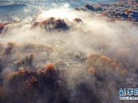 五彩斑斓的科尔沁秋景