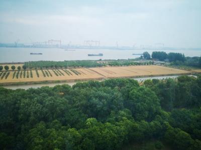 把世业洲建设成为新时代中国农村发展样板的构想