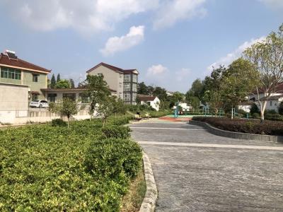"""江苏镇江:还滩涂,塑水韵,""""江中岛""""生态特质""""再上层楼"""""""