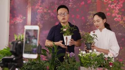江苏3年帮扶省内25万低收入农民就业脱贫