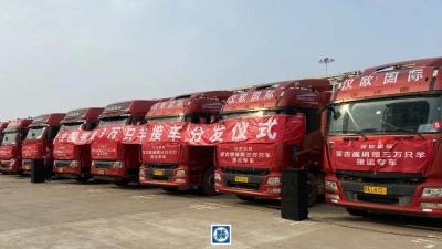 首批11267只羊已运抵武汉,分配方案定了!