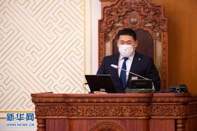 蒙古国议会任命奥云额尔登为新总理