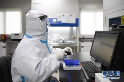 哈尔滨正大实业公司部分病例基因测序与望奎病例同源