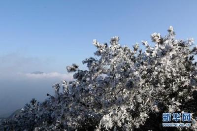 最低-13℃!未来三天江苏有严重冰冻,最最最厚的衣服穿上