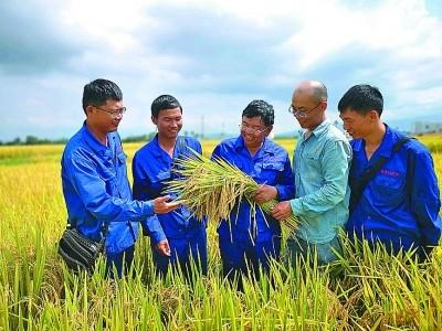 【聚焦我国粮食安全与种子问题(上篇)】培育一粒良种 只为粮丰民富