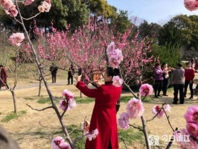 """踏青打卡 镇江景区新春旅游""""春意闹"""""""
