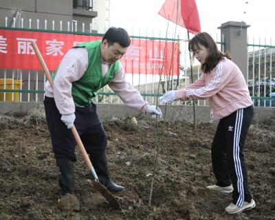 植树活动, 为建设美丽绿色家园贡献一份力量