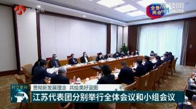 【全景两会】贯彻新发展理念 共绘美好蓝图 江苏代表团分别举行全体会议和小组会议