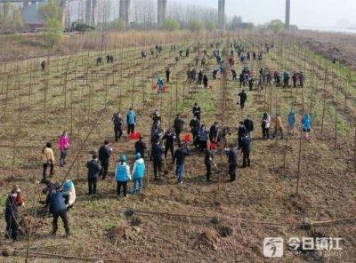 捐赠植树值得提倡