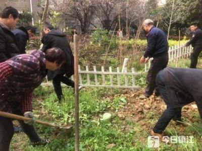 """整治""""毁绿种菜"""" 象山街道桓王亭社区还绿于居民"""