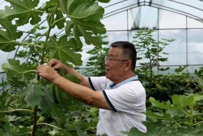 """赵亚夫:成绩写在大地上 """"小康""""留在农民家"""