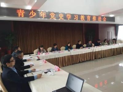 镇江召开青少年党史学习教育推进会