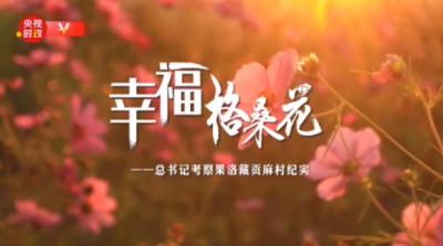 时政微纪录丨幸福格桑花——总书记考察果洛藏贡麻村纪实