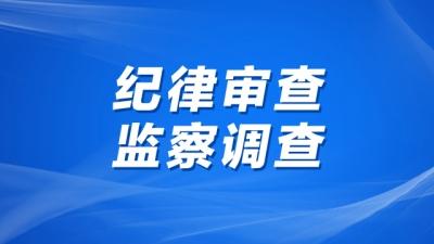 江苏丹化集团有限责任公司党委委员、副总经理兼江苏丹化进出口有限公司董事长、总经理陈国军接受纪律审查和监察调查
